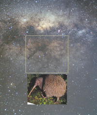 Queenstown_milkyway_kiwi