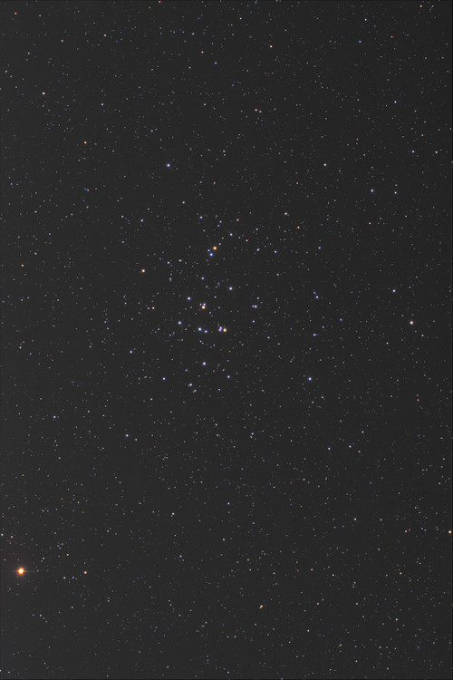 M44_x2_x16_b